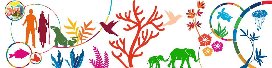 Conservation de la Biodiversité EFG